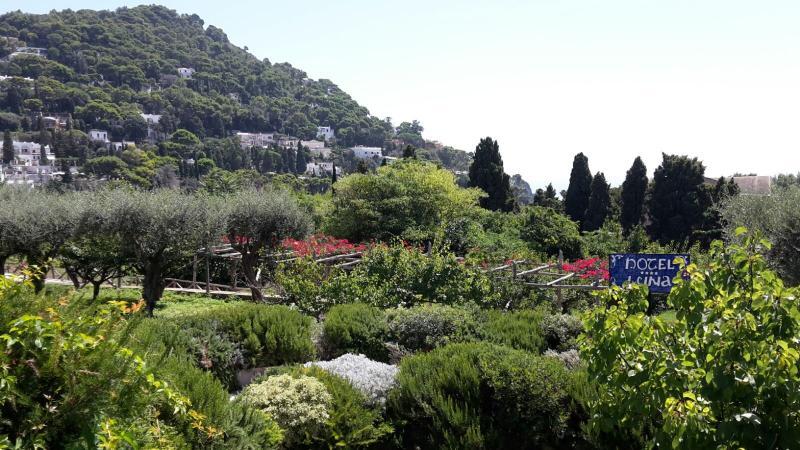 2015-08-27 - Costa Neoriviera - Capri-img-20150827-wa0042-jpg