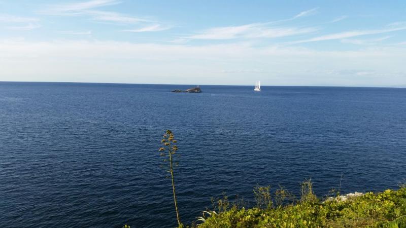 2015/09/08 La Signora del vento- Piombino- partenza--signora-vento-veliero-diretta-liveboat-crociere-13-jpg