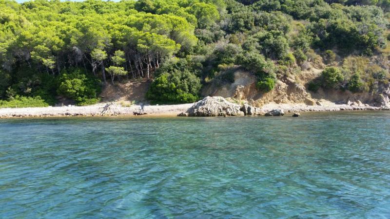 2015/09/08 La Signora del vento- Piombino- partenza--crociera-veliero-liveboat-crociere-signora-vento-19-jpg