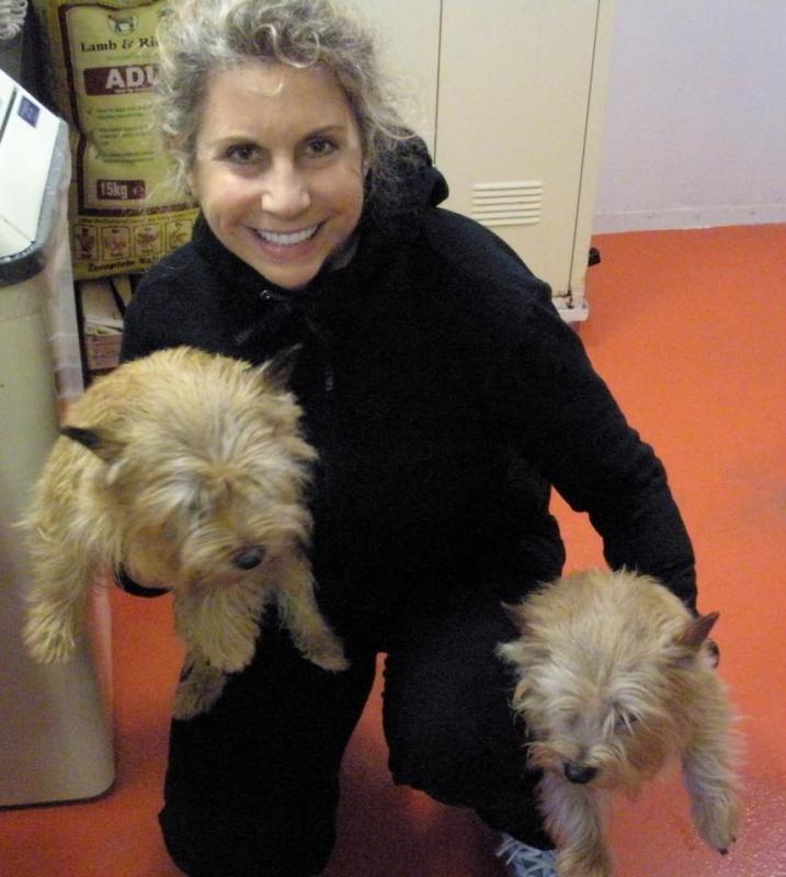 Quando si va in crociera col cane.-cani-bordo-navi-crociera-12-jpg