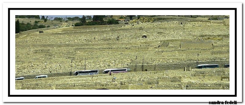 07/06/2013 Costa deliziosa - Ritorno in Terra Santa-image00542-jpg