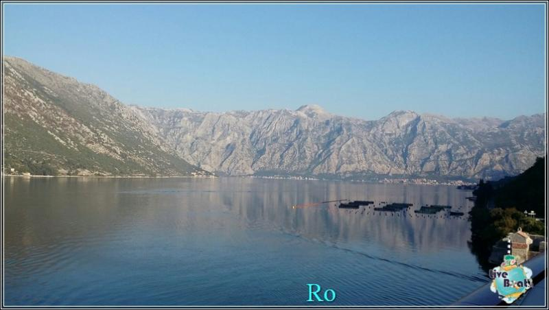 2015/11/05 Msc Opera Kotor-foto-msc-opera-kotor-forum-crociere-liveboat-2-jpg