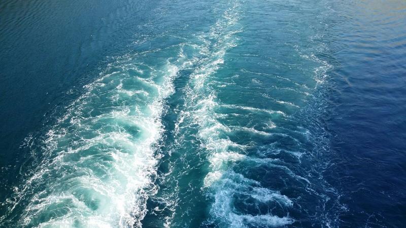 Quando si parte per una crociera per l'ultimo addio. pensionata vicentina sparisce .-foto-msc-opera-kotor-forum-crociere-liveboat-5-jpg