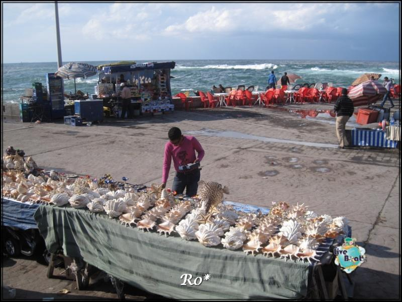 Cosa visitare ad Alessandria d'Egitto-foto-106alessandriaegitto-liveboatcrociere-jpg