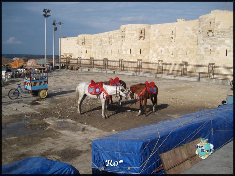 Cosa visitare ad Alessandria d'Egitto-foto-110alessandriaegitto-liveboatcrociere-jpg