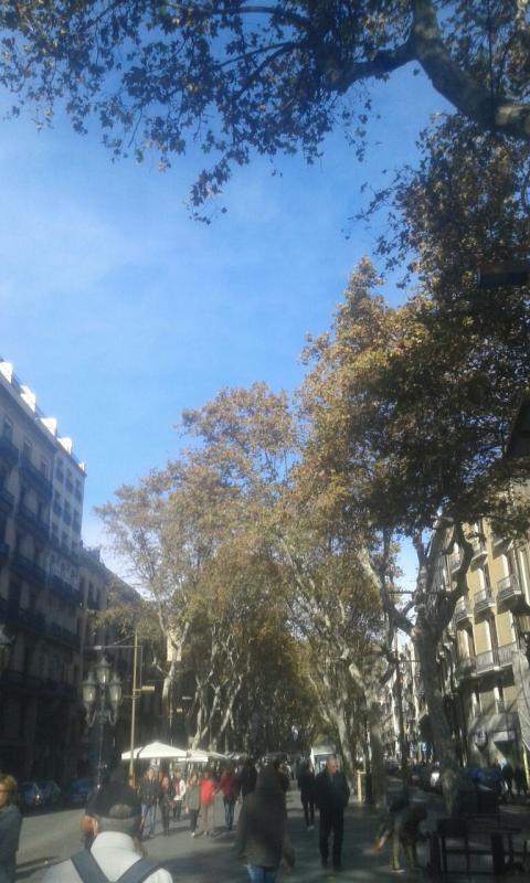 2015/11/22 Costa Favolosa, Barcellona-barcellona-costa-favolosa-liveboatcrociere-indirettadallanave-22-jpg