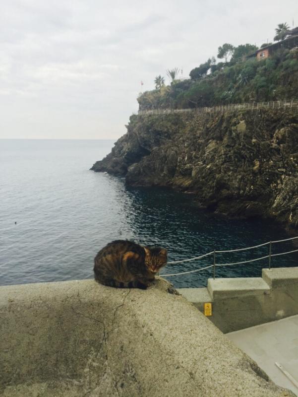 2015/12/04 Costa Diadema La Spezia-spezia-terre-diretta-liveboat-crociere-7-jpg