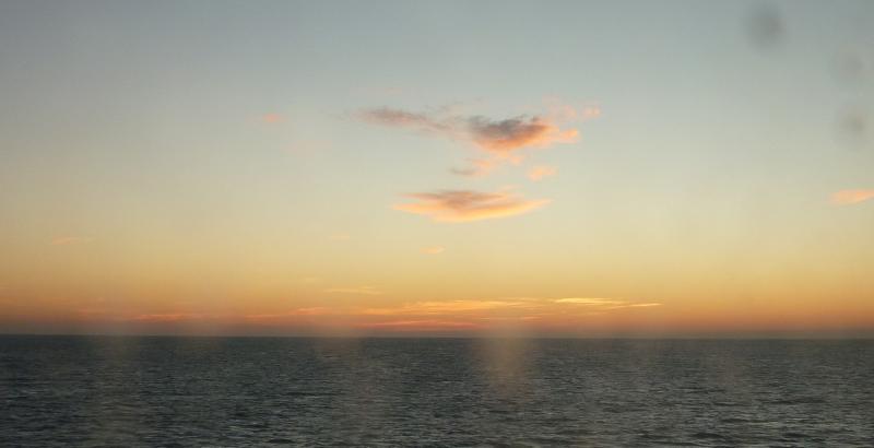 Costa Favolosa- Fiori del Mediterraneo- 13/11/2015  20/11/2015-p1280845-jpg