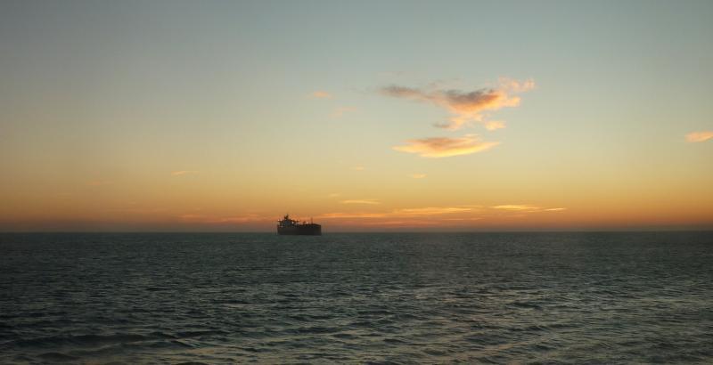 Costa Favolosa- Fiori del Mediterraneo- 13/11/2015  20/11/2015-p1280848-jpg