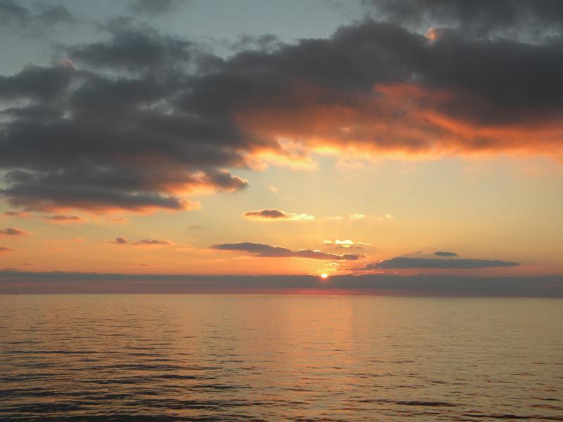 Costa Favolosa- Fiori del Mediterraneo- 13/11/2015  20/11/2015-dscn5139-jpg