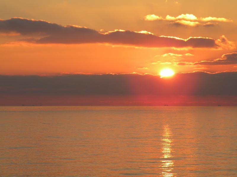 Costa Favolosa- Fiori del Mediterraneo- 13/11/2015  20/11/2015-dscn5144-jpg