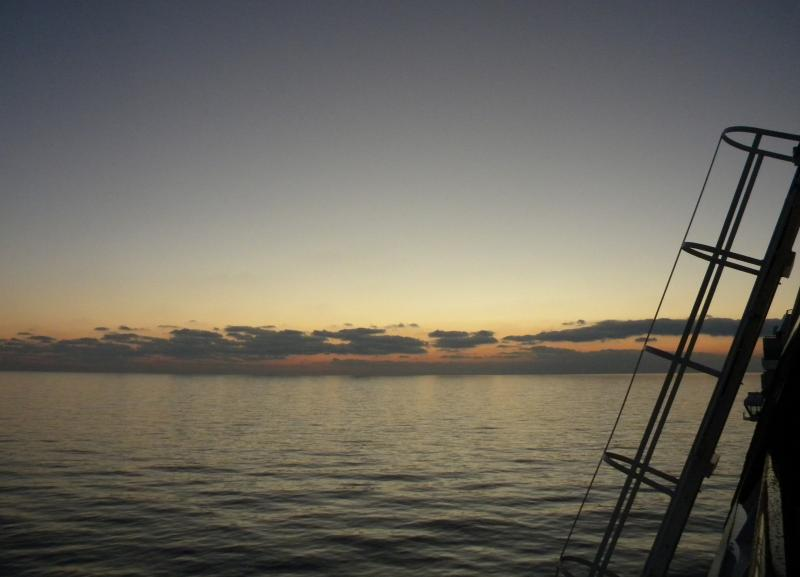 Costa Favolosa- Fiori del Mediterraneo- 13/11/2015  20/11/2015-dscn5094-jpg