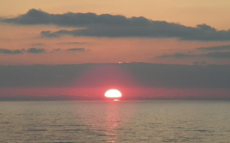 Costa Favolosa- Fiori del Mediterraneo- 13/11/2015  20/11/2015-dscn5115-jpg
