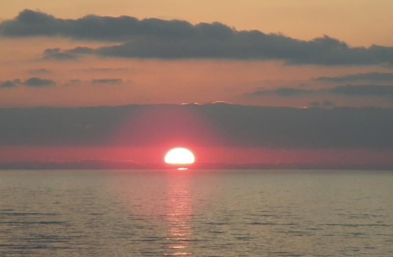 Costa Favolosa- Fiori del Mediterraneo- 13/11/2015  20/11/2015-dscn5117-jpg