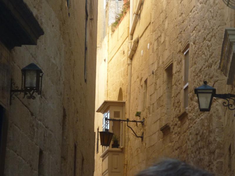Costa Favolosa- Fiori del Mediterraneo- 13/11/2015  20/11/2015-p1290064-jpg