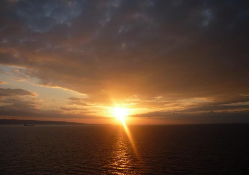 Costa Favolosa- Fiori del Mediterraneo- 13/11/2015  20/11/2015-p1290550-jpg