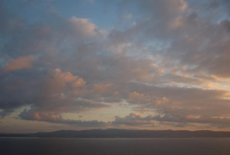 Costa Favolosa- Fiori del Mediterraneo- 13/11/2015  20/11/2015-p1290554-jpg