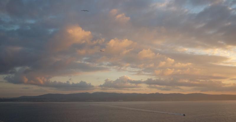 Costa Favolosa- Fiori del Mediterraneo- 13/11/2015  20/11/2015-p1290559-jpg