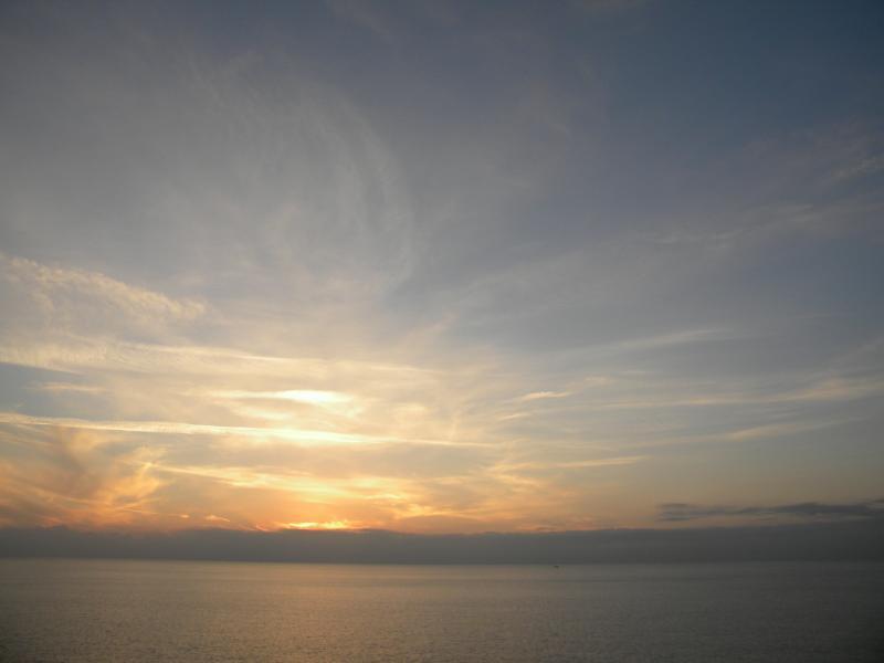 Costa Favolosa- Fiori del Mediterraneo- 13/11/2015  20/11/2015-dscn5268-jpg