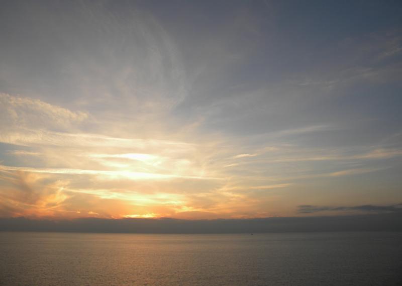 Costa Favolosa- Fiori del Mediterraneo- 13/11/2015  20/11/2015-dscn5269-jpg
