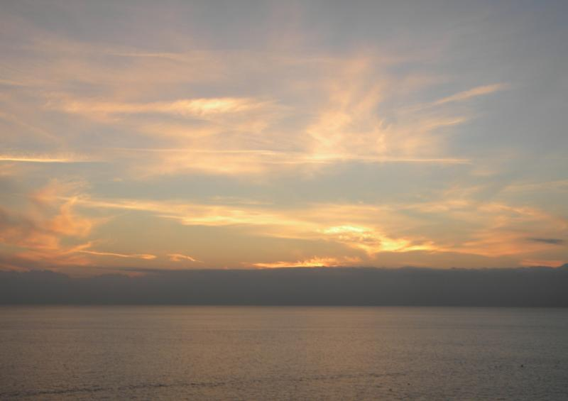 Costa Favolosa- Fiori del Mediterraneo- 13/11/2015  20/11/2015-dscn5286-jpg