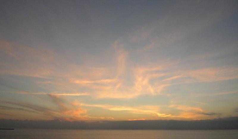 Costa Favolosa- Fiori del Mediterraneo- 13/11/2015  20/11/2015-dscn5287-jpg