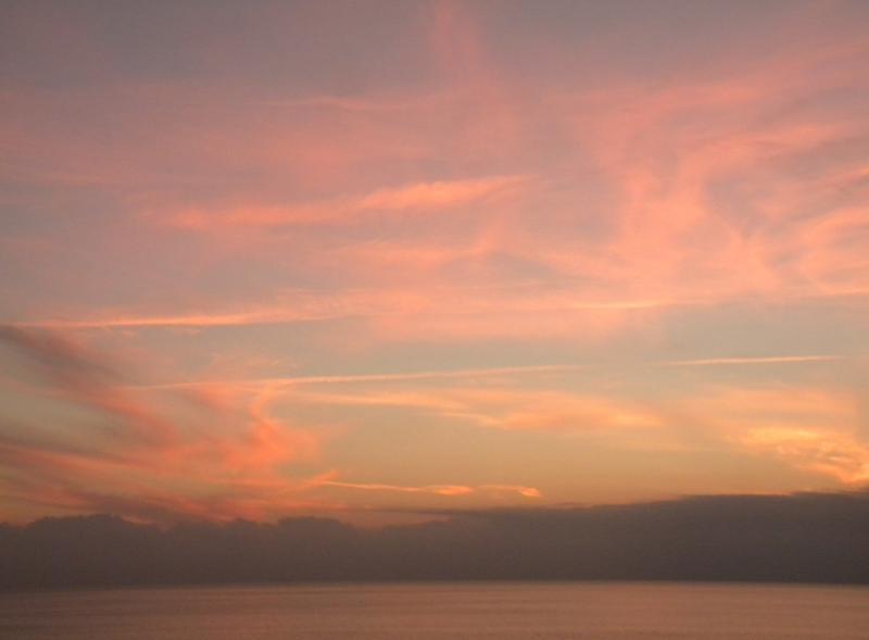 Costa Favolosa- Fiori del Mediterraneo- 13/11/2015  20/11/2015-dscn5302-jpg