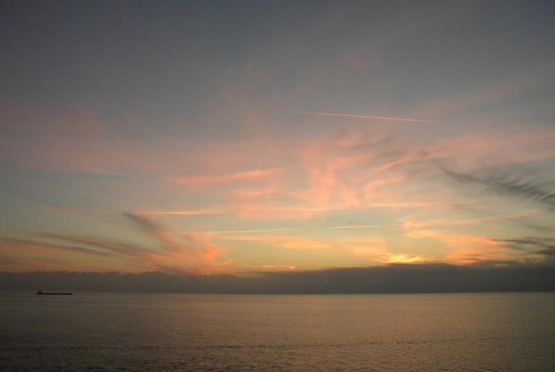 Costa Favolosa- Fiori del Mediterraneo- 13/11/2015  20/11/2015-dscn5305-jpg