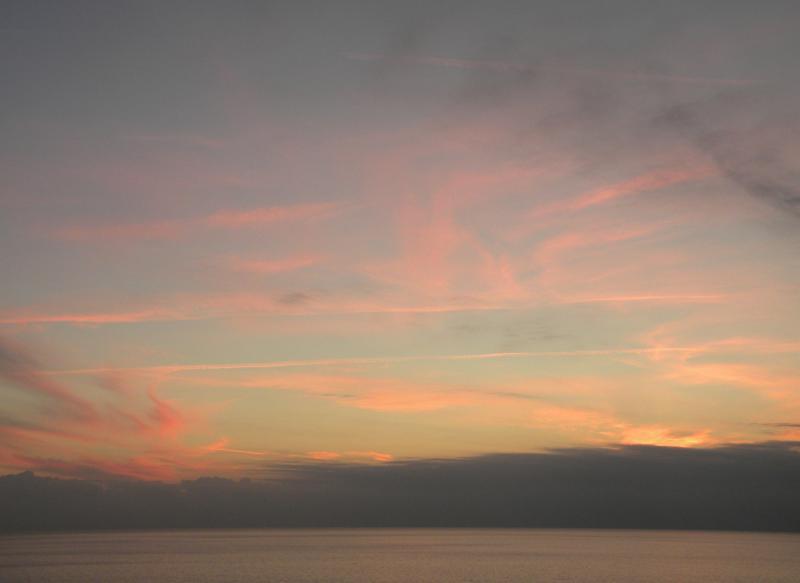 Costa Favolosa- Fiori del Mediterraneo- 13/11/2015  20/11/2015-dscn5314-jpg