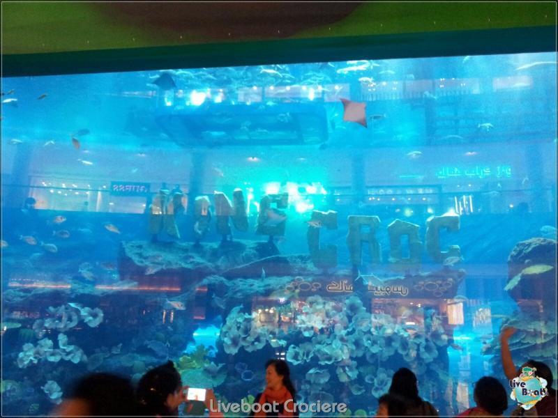 2015/12/18 Dubai - Sbarco Msc Musica-liveboat-017-crociere-msc-musica-dubai-jpg