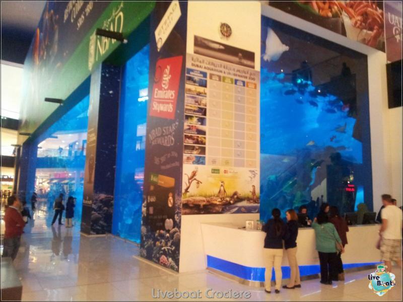 2015/12/18 Dubai - Sbarco Msc Musica-liveboat-019-crociere-msc-musica-dubai-jpg