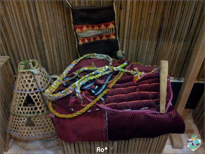Cosa visitare a Khor Fakkan e Fujairah-liveboat343-crociere-msc-musica-dubai-emirati-arabi-jpg