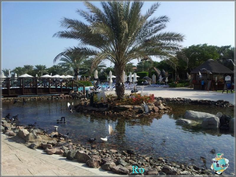 Cosa visitare a Khor Fakkan e Fujairah-foto-msc-musica-khor-fakkan-crociera-blogger-forum-crociere-liveboat-27-jpg
