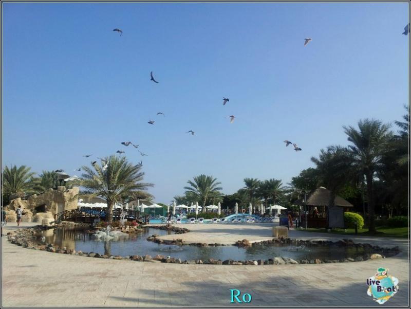Cosa visitare a Khor Fakkan e Fujairah-foto-msc-musica-khor-fakkan-crociera-blogger-forum-crociere-liveboat-29-jpg