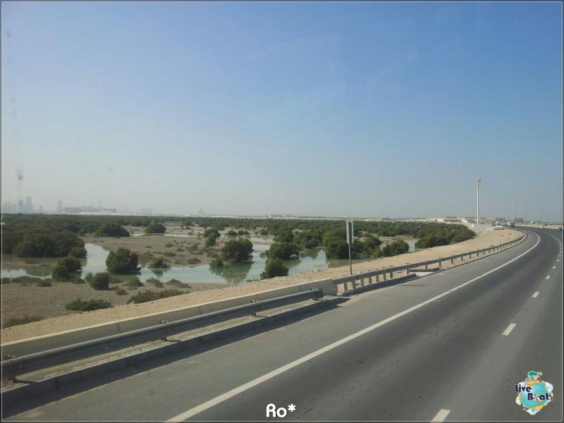 Cosa visitare ad Abu Dhabi-liveboat242-crociere-msc-musica-dubai-emirati-arabi-jpg