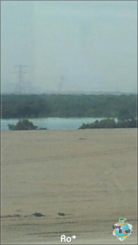 Cosa visitare ad Abu Dhabi-liveboat245-crociere-msc-musica-dubai-emirati-arabi-jpg