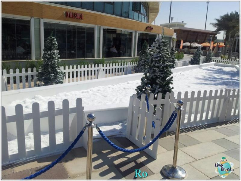 Cosa visitare ad Abu Dhabi-foto-msc-poesia-abu-dhabi-crociera-blogger-forum-crociere-liveboat-15-jpg