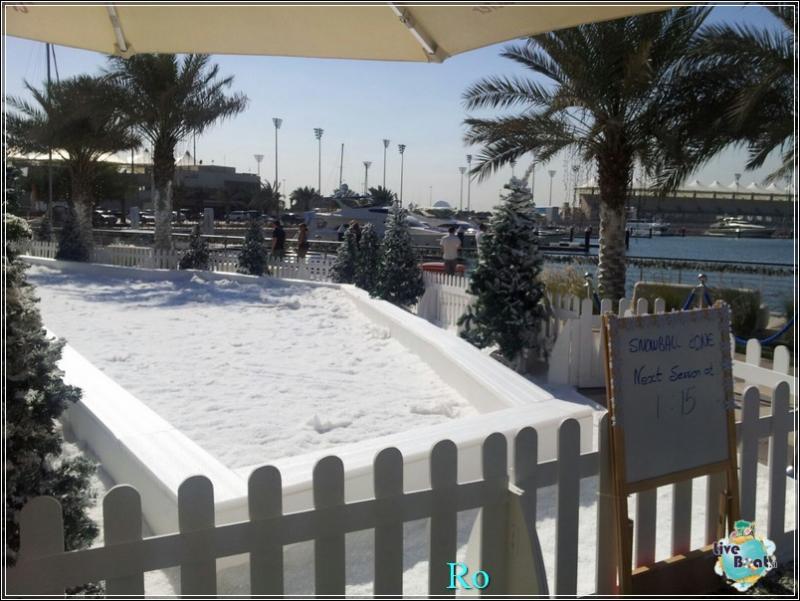 Cosa visitare ad Abu Dhabi-foto-msc-poesia-abu-dhabi-crociera-blogger-forum-crociere-liveboat-24-jpg