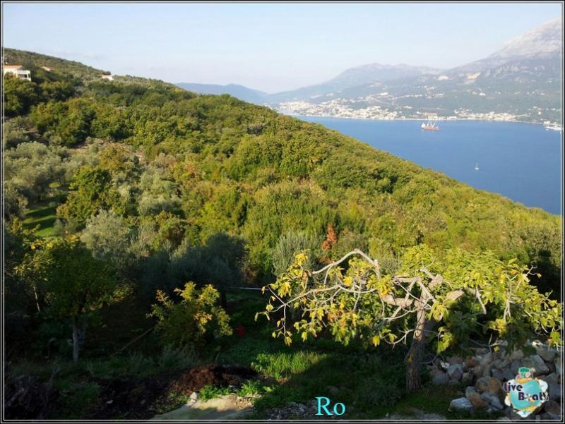 Che cosa visitare a Kotor in Montenegro- Cattaro--foto-msc-opera-kotor-escursione-forum-crociere-liveboat-8-jpg