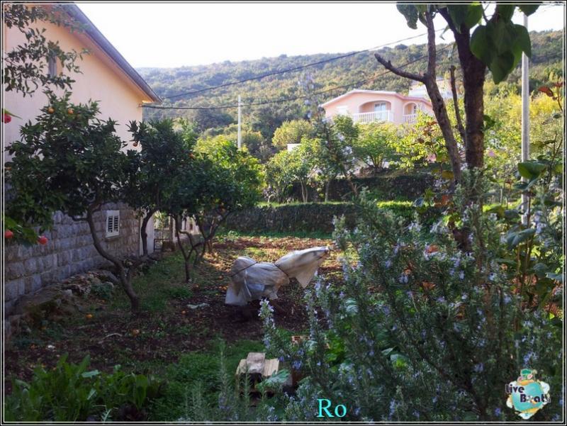 Che cosa visitare a Kotor in Montenegro- Cattaro--foto-msc-opera-kotor-escursione-forum-crociere-liveboat-25-jpg
