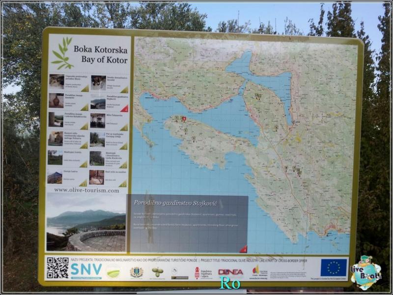 Che cosa visitare a Kotor in Montenegro- Cattaro--foto-msc-opera-kotor-forum-crociere-liveboat-8-jpg