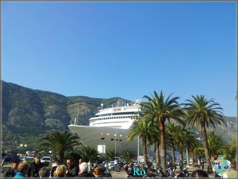 Che cosa visitare a Kotor in Montenegro- Cattaro--foto-msc-opera-kotor-forum-crociere-liveboat-27-jpg