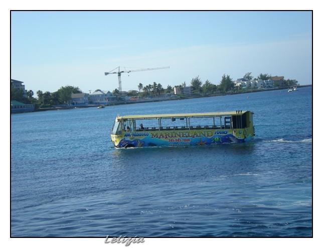 23/12/11 - Grand Cayman-dscn4684-jpg