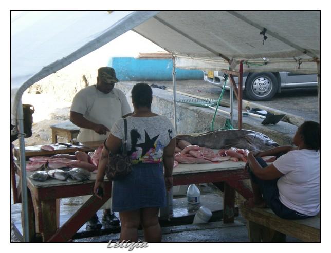 23/12/11 - Grand Cayman-dscn4685-jpg
