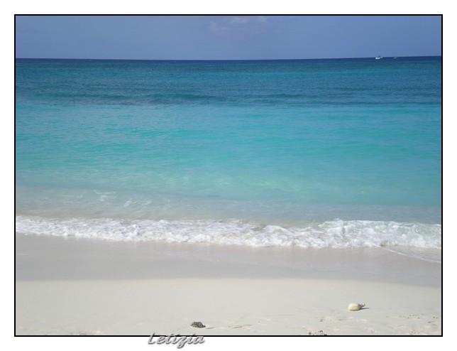 23/12/11 - Grand Cayman-dscn4693-jpg