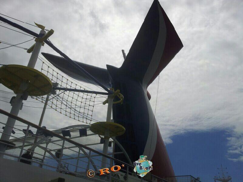 -341-carnival-sunshine-liveboat-jpg