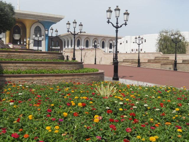 Grande crociera del vicino Oriente,2013 Dubai-SV-C. Classica-aprile-2013-1750-jpg