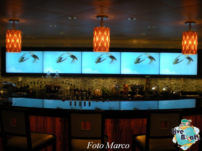 """Il """"Molecular Bar"""" di Celebrity Silhouette-131foto-liveboat-celebrity-silhouette-jpg"""