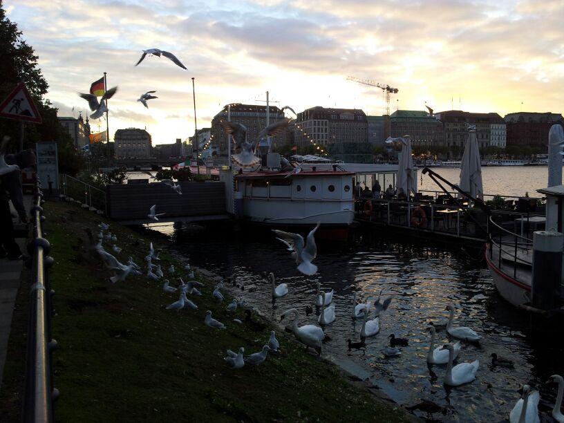 2013/09/23 Seatrade Partenza da Nizza per Amburgo-amburgo-seatrade-liveboat-crociere-29-jpg