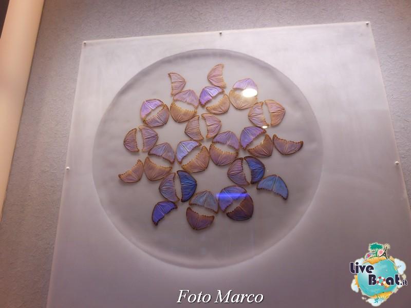 C. Silhouette - Napoli, Malta, Egeo - 12-24.08.13-486foto-liveboat-celebrity-silhouette-jpg